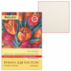 Папка для пастели А4, 210х297 мм, 20 л., BRAUBERG, тонированная бумага