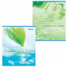 """Тетрадь 48 л. BRAUBERG ЭКО, клетка, обложка мелованный картон, """"Экология"""", 2 вида"""