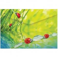 """Папка-конверт на кнопке Berlingo """"Ladybird"""", А4, 180мкм"""