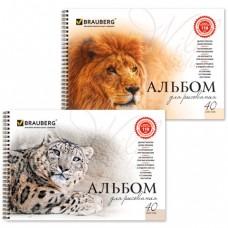 """Альбом для рисования, А4, 40 л., гребень, обложка картон, BRAUBERG """"Благородные кошки"""""""