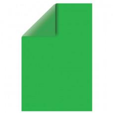 Цветной картон, А4, двусторонний, тонированный, 220 г/м2, 1 лист, зеленый интенсивный, BRAUBERG