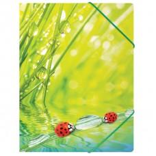 """Папка на резинке Berlingo """"Ladybird """" А4, 550мкм"""