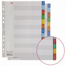 Разделитель картонный А4, 12 листов, Январь-Декабрь, 225х297 мм, HATBER