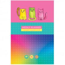 """Записная книжка А5 80л. BG """"Яркие коты"""", матовая ламинация, выб. лак, блок в точку"""