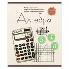 Тетрадь предметная ЗНАНИЕ-СИЛА 48 л., обложка картон, АЛГЕБРА, клетка