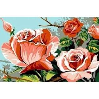 """Рисование по номерам 40х50 """"Розовый куст"""" EX5541"""