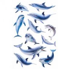 """Наклейки HERMA """"Голубой Дельфин"""""""