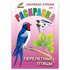 """Раскраска """"Первые уроки-Перелетные птицы"""", А5"""