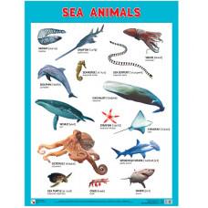 Плакаты (англ). Sea Animals (Морские обитатели)