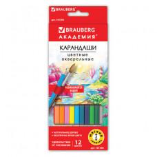 """Карандаши цветные акварельные BRAUBERG """"АКАДЕМИЯ"""", 12 цветов, шестигранные, высокое качество"""